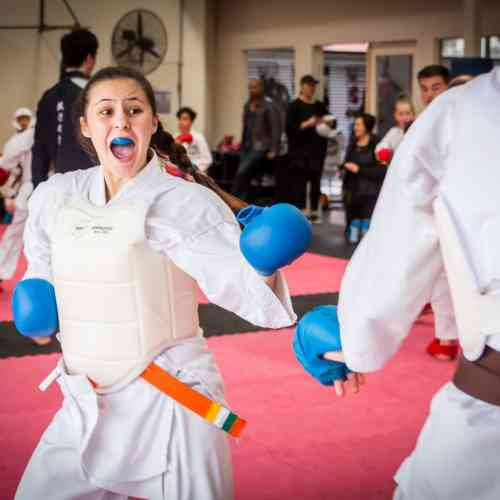 Teenagers and Adults Karate
